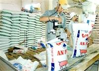Thủ tục Hải quan nhập khẩu thức ăn gia súc