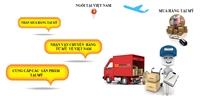 Vận chuyển hàng hóa từ Mỹ về Việt Nam