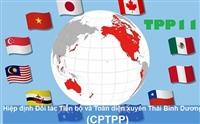 Vì sao Việt Nam phải ký nhiều FTA?