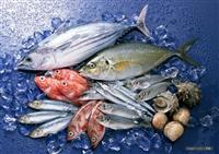 Thủy sản nhập khẩu chỉ phải đăng ký kiểm dịch miễn kiểm tra ATTP